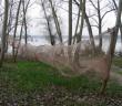 Tofi sul lago