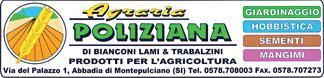 logo_colore