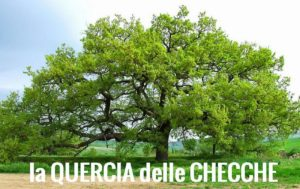 quercia blog