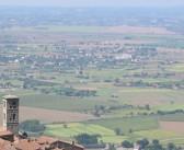 Rinascimento Verde in Valdichiana: intervista ad Albano Ricci
