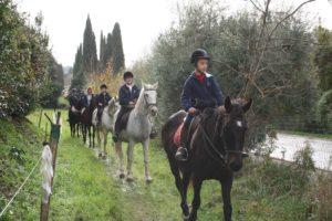 inauguraz horse_1