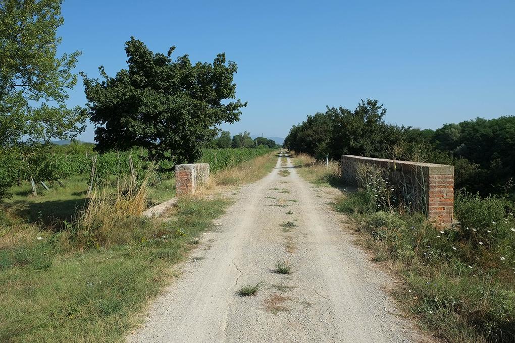 sentiero della bonifica ponti d'arezzo